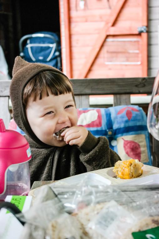 Barnevennlig vegetarmat